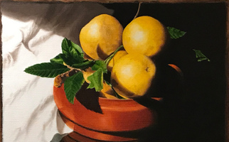 "<strong>Bowl, cloth, gruit</strong> <span class=""dims"">20x14""</span> oil on linen"